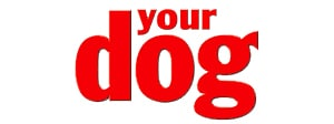 your-dog-logo